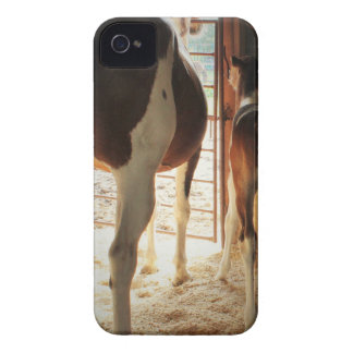 Mama's Love Case-Mate iPhone 4 Cases
