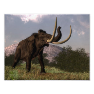 Mammoth - 3D render Photo