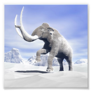 Mammoth in the wind photo print