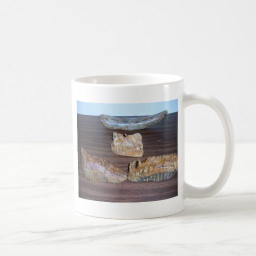 mammoth teeth tusk tip coffee mugs