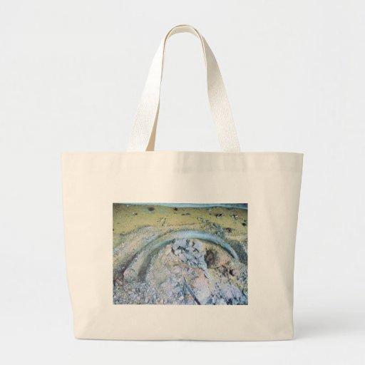 mammoth tusk in kotz ak canvas bags