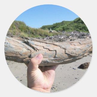 mammoth tusk round sticker