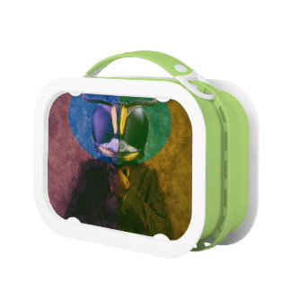 Man fly lunch box