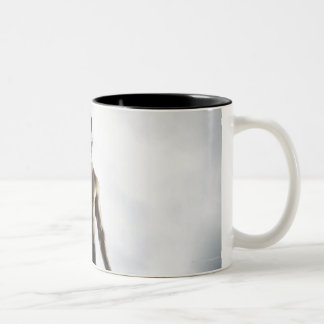 Man lifting weights 3 Two-Tone coffee mug