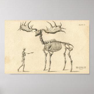 Man & Moose Vintage Poster