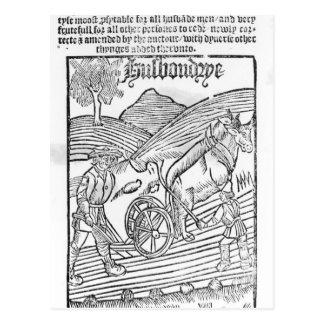 Man Ploughing a Field Postcard