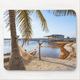 Man Relaxing In A Hammock Under Palm Tree, Belize Mouse Pad