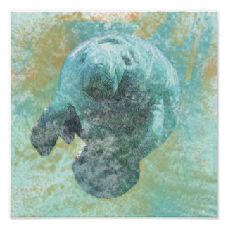 Manatee Artwork | Poster