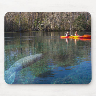 Manatee Encounter Mouse Pad