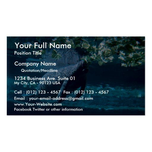 Manatee, Lowry Park Zoo, Tampa Bay, Florida, U.S.A Pack Of Standard Business Cards