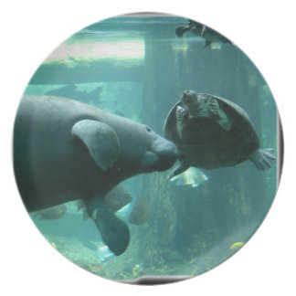 manatee N turtle_10x10 Party Plate