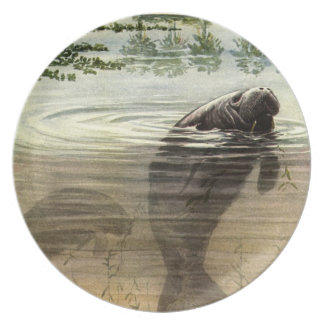 Manatee  Painting  Zazzle  Plate