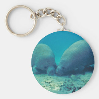 Manatee Rooting in Sand Basic Round Button Key Ring