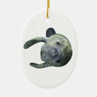 Manatee Springs Ceramic Ornament