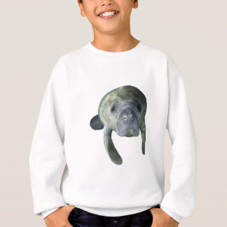 Manatee Springs Sweatshirt