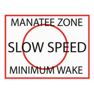 Manatee Zone Minimum Wake Postcard