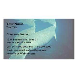 Manatees Surfacing for Air Business Card