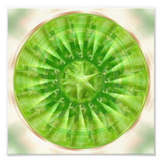 Mandala Design Flower Circle Energy Green Plant Photo Print