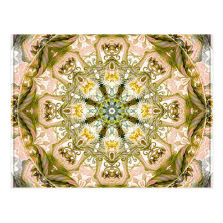 Mandalas from the Heart of Freedom 15 Postcard