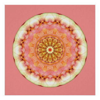 Mandalas from the Heart of Transformation, No. 9 Poster