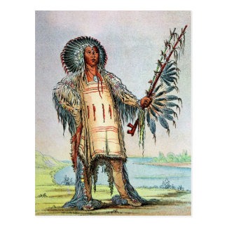 Mandan Indian Ha-Na-Tah-Muah, Wolf chief Postcard