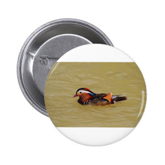 Mandarin Duck 6 Cm Round Badge