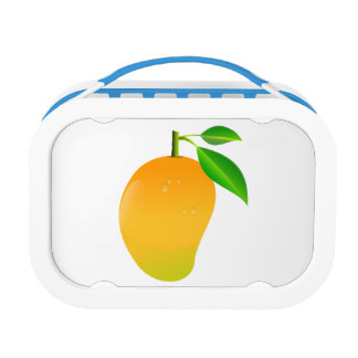 Mango Lunch Boxes