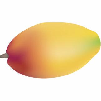 Mango Photo Sculpture Magnet
