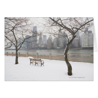 Manhattan in the Winter Card