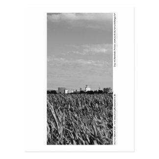 Mannheim - skyline postcard