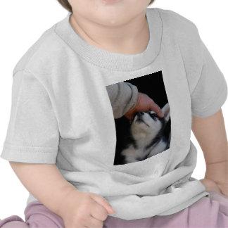 Man's Best Friend Siberian Husky Puppy T-shirt