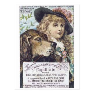 Mansfields Capallaris Postcard