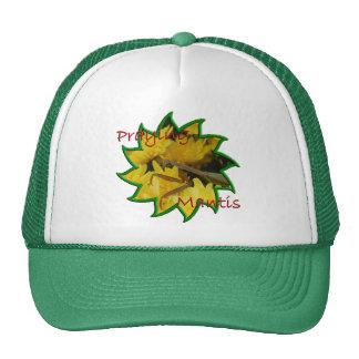 Mantis & Chrysanthemums - Hat #1