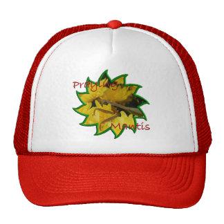 Mantis Chrysanthemums - Hat 2