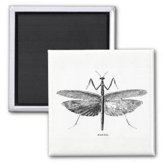 Mantis Magnet