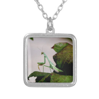 Mantis On A Hydrangea Silver Plated Necklace
