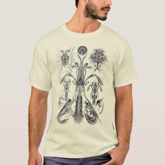Mantis Shrimp T-Shirt
