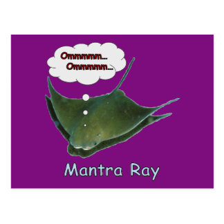 Mantra Ray Postcard