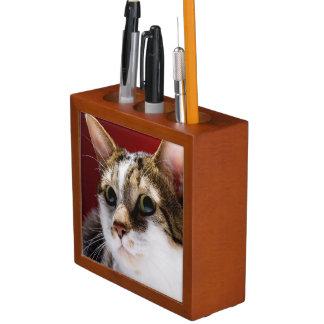 Manx cat desk organiser