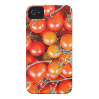Many bunches of red vine tomatoes Case-Mate iPhone 4 cases