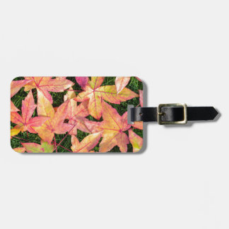 Many colorful autumn maple leaves on green grass bag tag