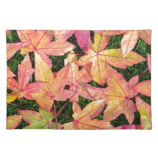 Many colorful autumn maple leaves on green grass placemat
