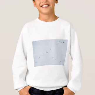 Many mosquitoes on a wall sweatshirt