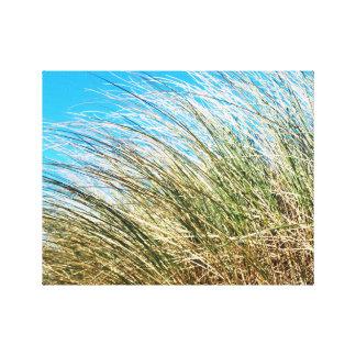 Manzanita Beach Grasses, Coastal Nature Gallery Wrap Canvas