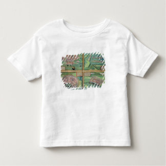 Map of Calais, Malta, Rhodes, and Famagusta, from Shirts