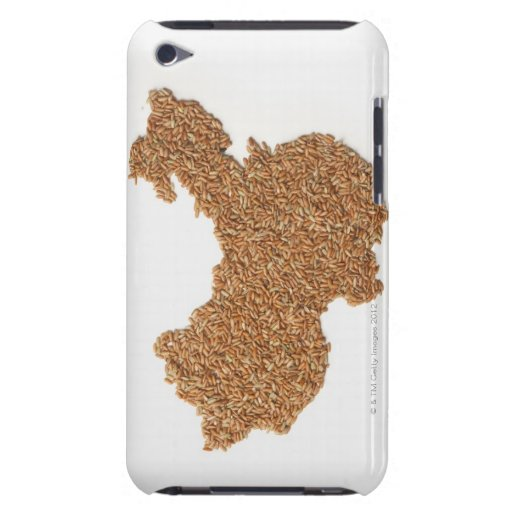 Map of Mainland China made of Glutinous Rice Barely There iPod Covers