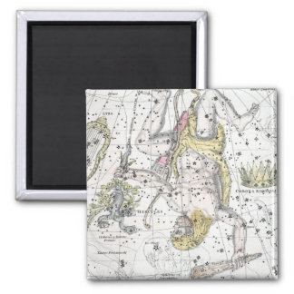 Map of The Constellations Plate VIII Magnet