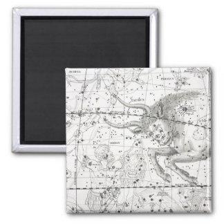 Map of The Constellations Plate XIV Magnet