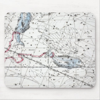 Map of The Constellations Plate XXII Mouse Pad