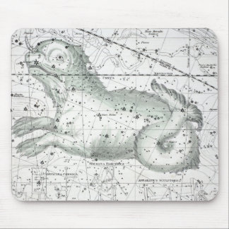 Map of The Constellations Plate XXIII Mouse Pad